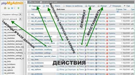 Таблица базы данных cPanel