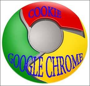 Google chrome-как удалить файлы куки