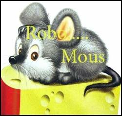 Запись мыши